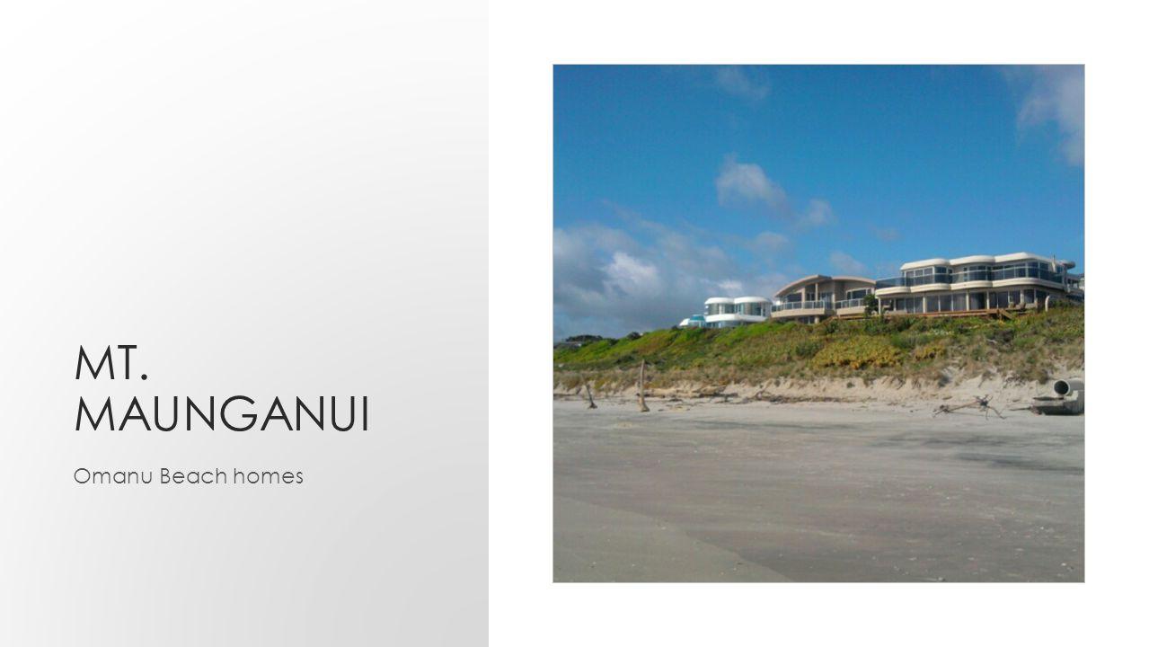 MT. MAUNGANUI Omanu Beach homes