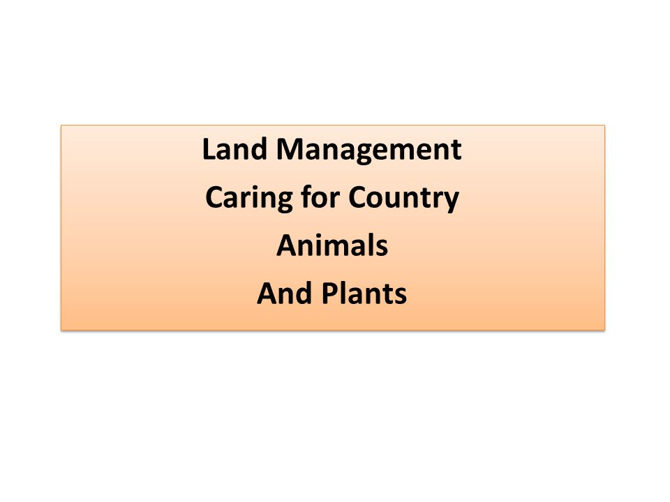 Land Management Caring for Country Animals And Plants Land Management Caring for Country Animals And Plants