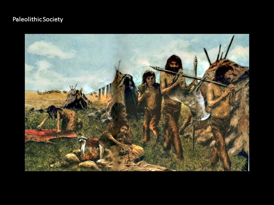 Paleolithic Society