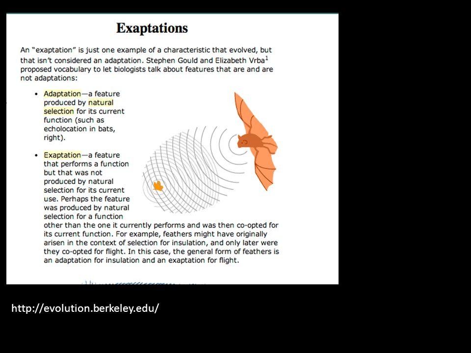 http://evolution.berkeley.edu/