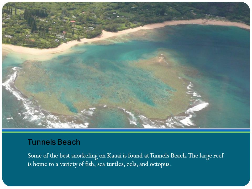Tunnels Beach Some of the best snorkeling on Kauai is found at Tunnels Beach.