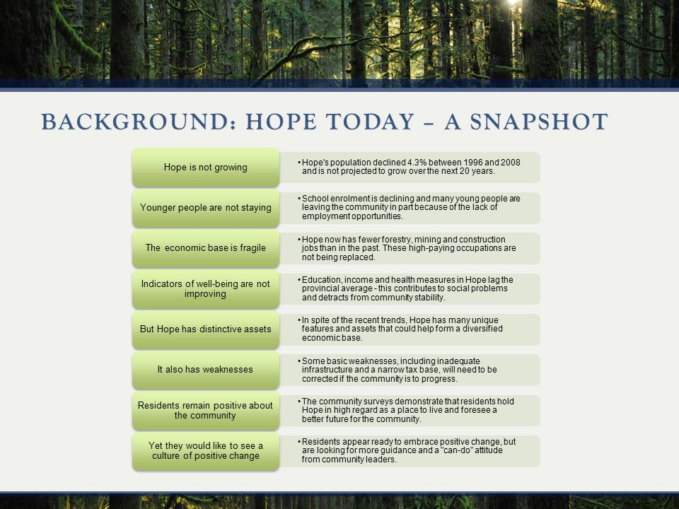BACKGROUND: HOPE TODAY – A SNAPSHOT Hope s population declined 4.3% between 1996 and 2008 and is not projected to grow over the next 20 years.