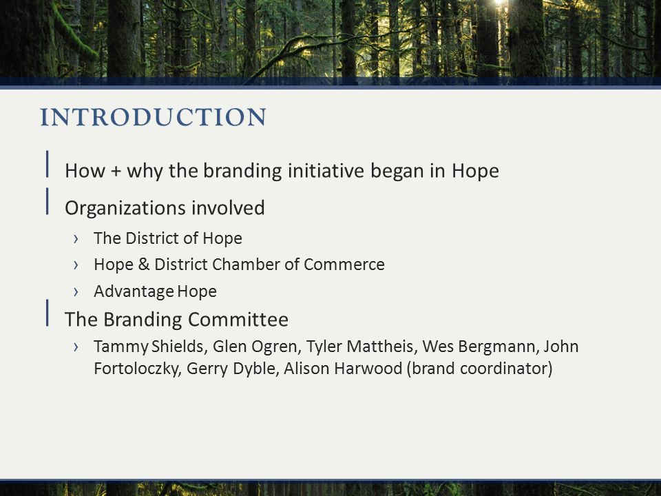 INTRODUCTION  How + why the branding initiative began in Hope  Organizations involved ›The District of Hope ›Hope & District Chamber of Commerce ›Advantage Hope  The Branding Committee ›Tammy Shields, Glen Ogren, Tyler Mattheis, Wes Bergmann, John Fortoloczky, Gerry Dyble, Alison Harwood (brand coordinator)