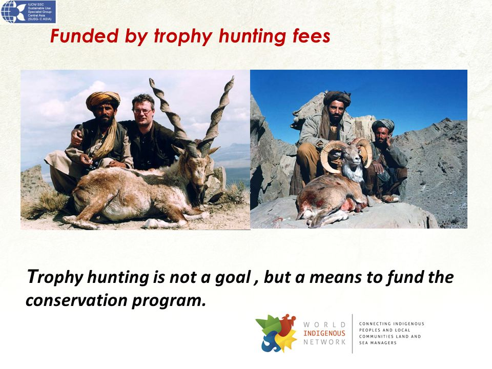 Funded by trophy hunting fees T rophy hunting is not a goal, but a means to fund the conservation program.