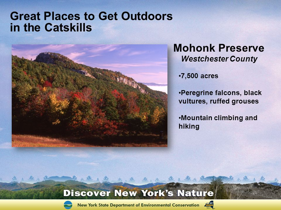 Great Places to Get Outdoors in the Catskills Mohonk Preserve Westchester County 7,500 acres Peregrine falcons, black vultures, ruffed grouses Mountai