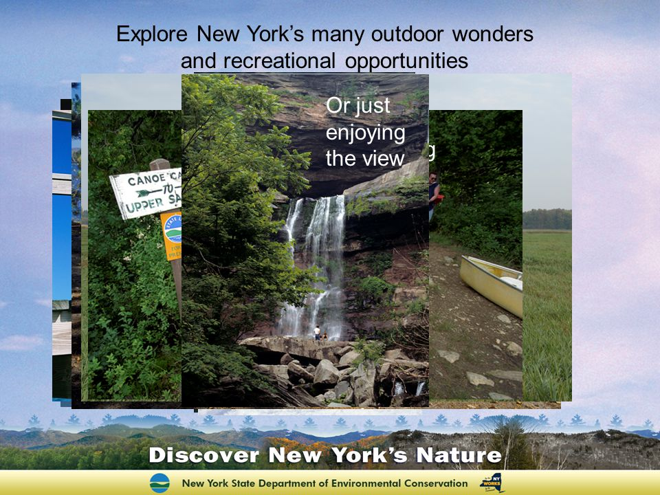 Plan a Great Wildlife Viewing Experience Order your Guide at: www.newyorkwatchablewildlife.org Where to Find Wildlife Where to Look for Your Favorite Animal Where to Find Wildlife What Sounds to Listen for