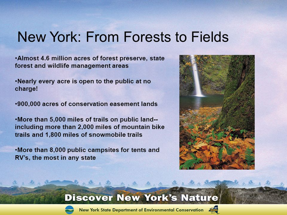 Almost 4.6 million acres of forest preserve, state forest and wildlife management areas Nearly every acre is open to the public at no charge! 900,000