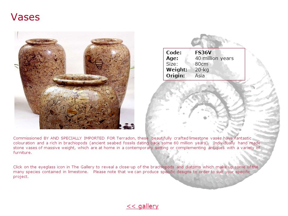 Pictures ~ Ammonites << gallery Picture 1 Large ammonite Code:KKC3AMDT Age:120 million years Size:600 x 750 cm Weight:5kg Origin:Madagasca Picture 2 Large Ammonite Code:KKC2AMPT Age:120 million years Size:600 x 750 cm Weight:5kg Origin:Madagascar Wonderful colouration and patination ensure that no two pictures are the same.