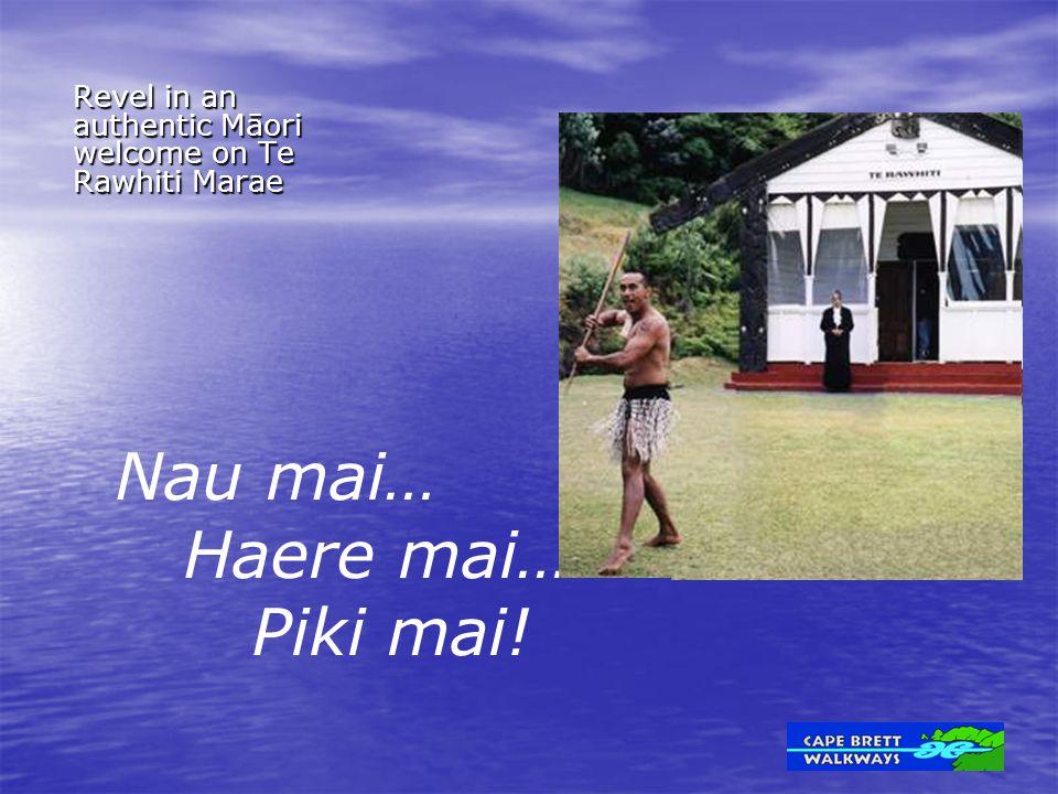 Revel in an authentic Māori welcome on Te Rawhiti Marae Nau mai… Haere mai… Piki mai!
