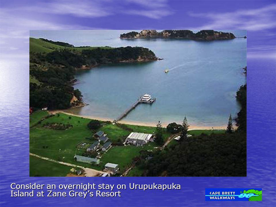Consider an overnight stay on Urupukapuka Island at Zane Grey's Resort