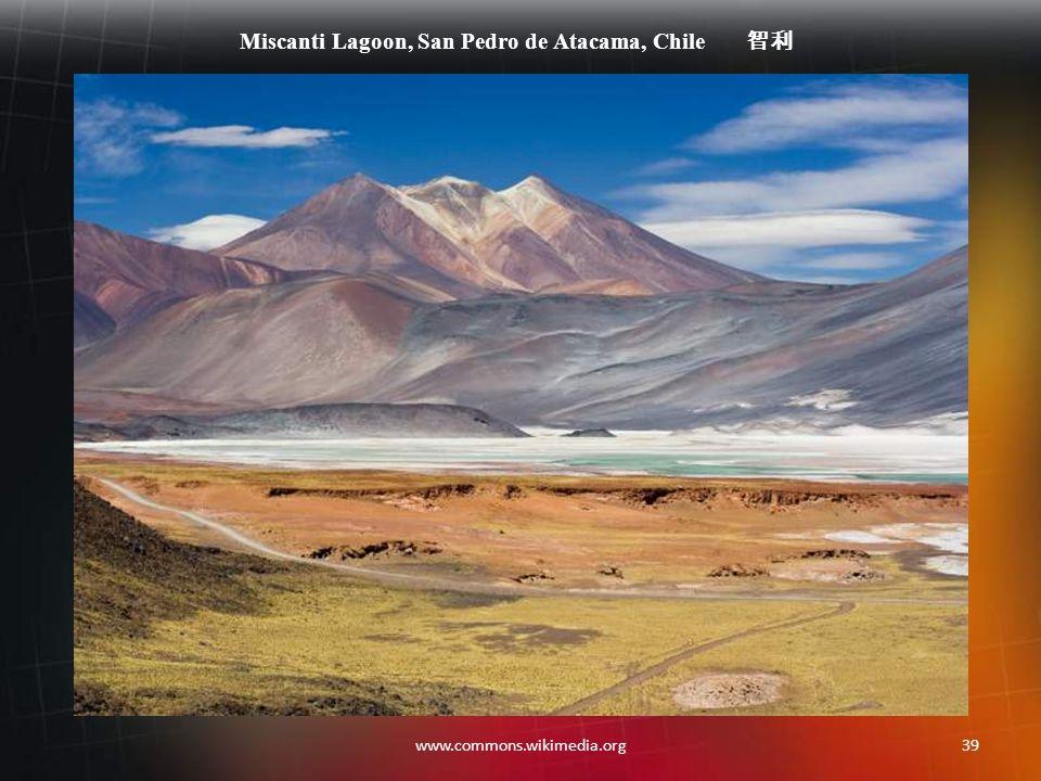 38www.commons.wikimedia.org Perito Moreno Glacier, Patagonia, Argentina 阿根廷,巴塔哥尼亚,佩里托莫雷诺冰河