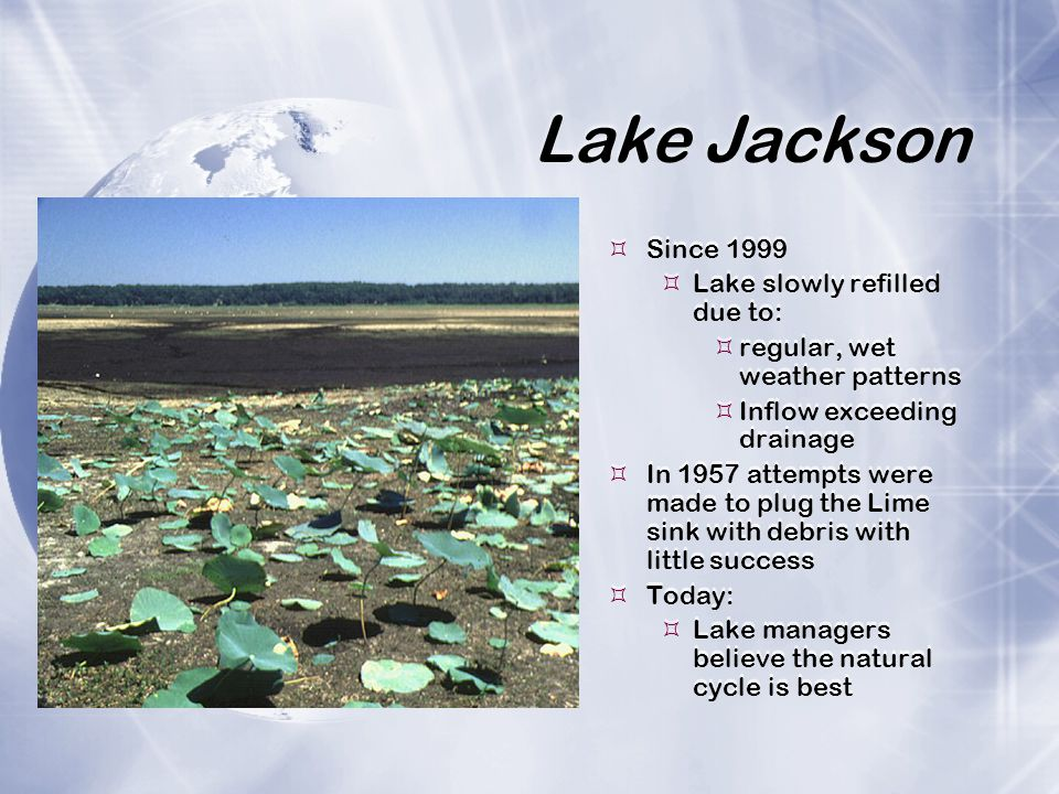 Lake Jackson  Since 1999  Lake slowly refilled due to:  regular, wet weather patterns  Inflow exceeding drainage  In 1957 attempts were made to plug the Lime sink with debris with little success  Today:  Lake managers believe the natural cycle is best  Since 1999  Lake slowly refilled due to:  regular, wet weather patterns  Inflow exceeding drainage  In 1957 attempts were made to plug the Lime sink with debris with little success  Today:  Lake managers believe the natural cycle is best