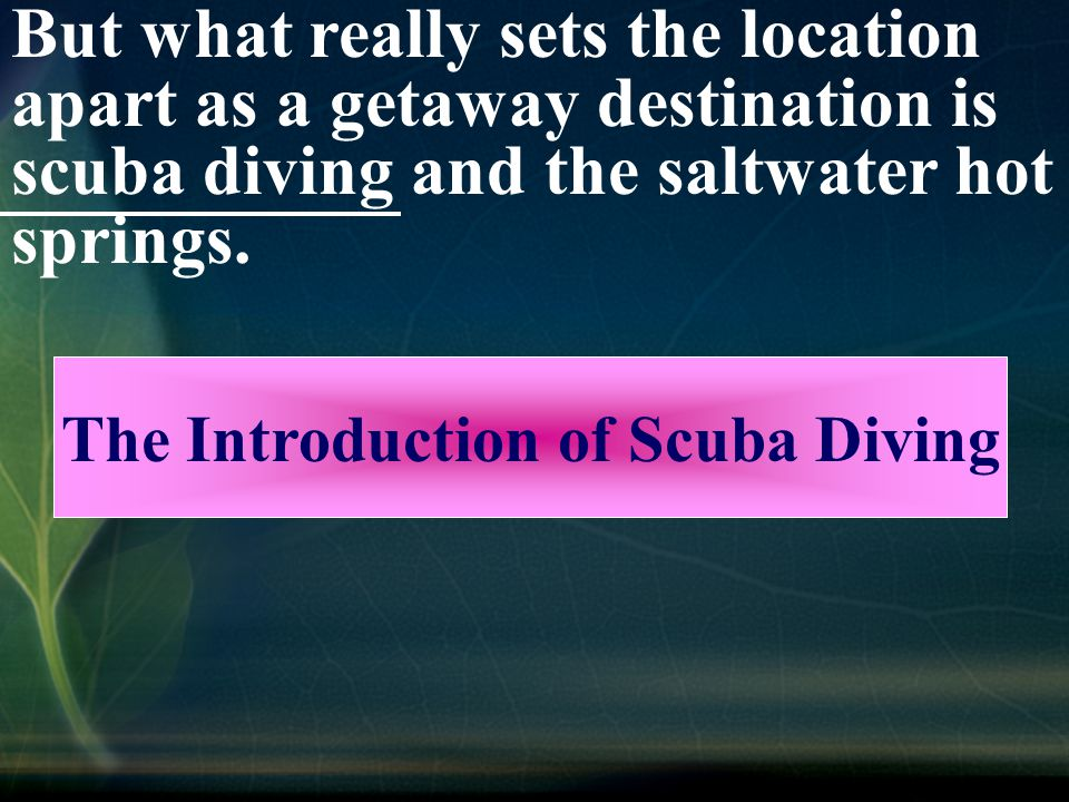 But what really sets the location apart as a getaway destination is scuba diving and the saltwater hot springs.