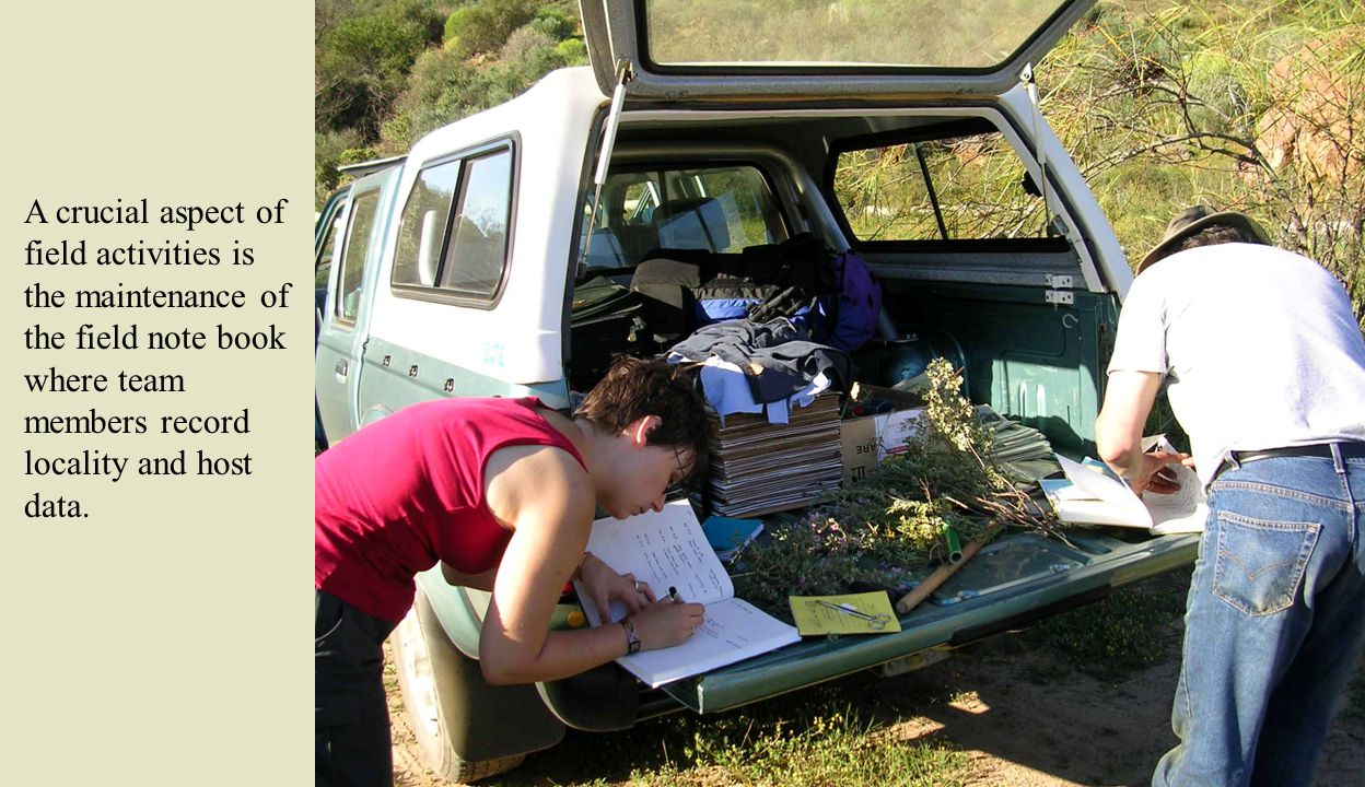A crucial aspect of field activities is the maintenance of the field note book where team members record locality and host data.