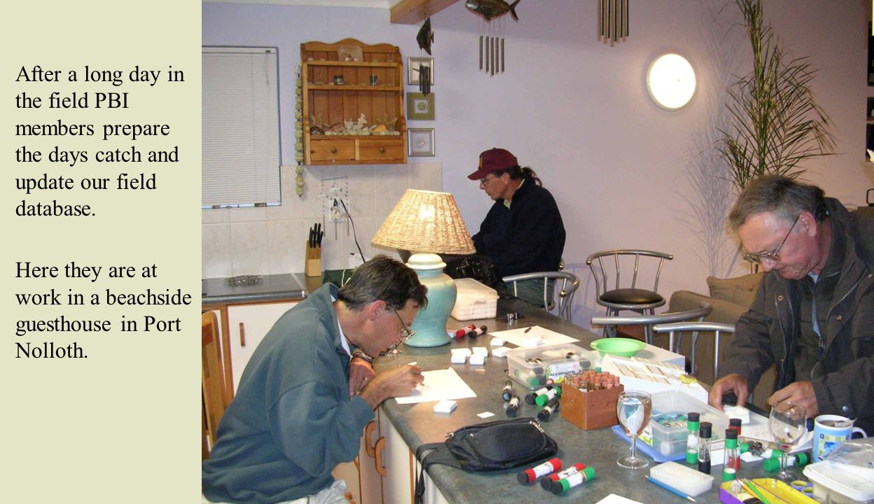 After a long day in the field PBI members prepare the days catch and update our field database.