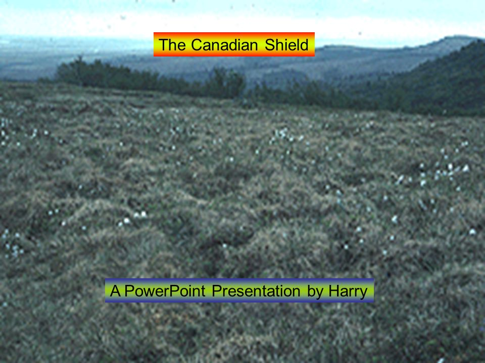 The Canadian Shield A PowerPoint Presentation by Harry