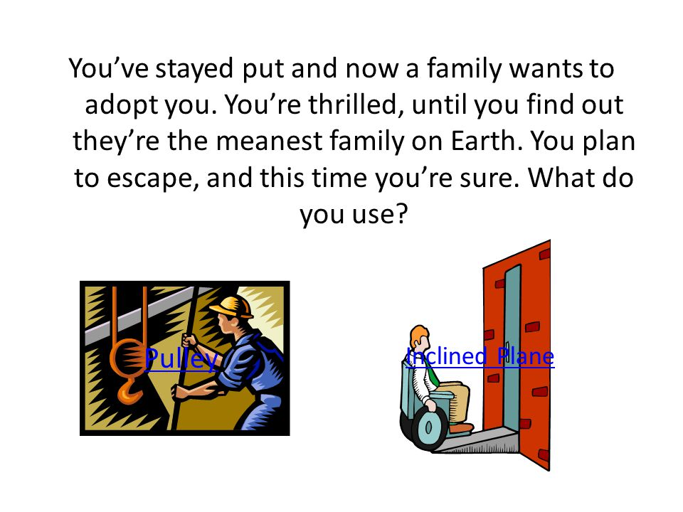 You've stayed put and now a family wants to adopt you.