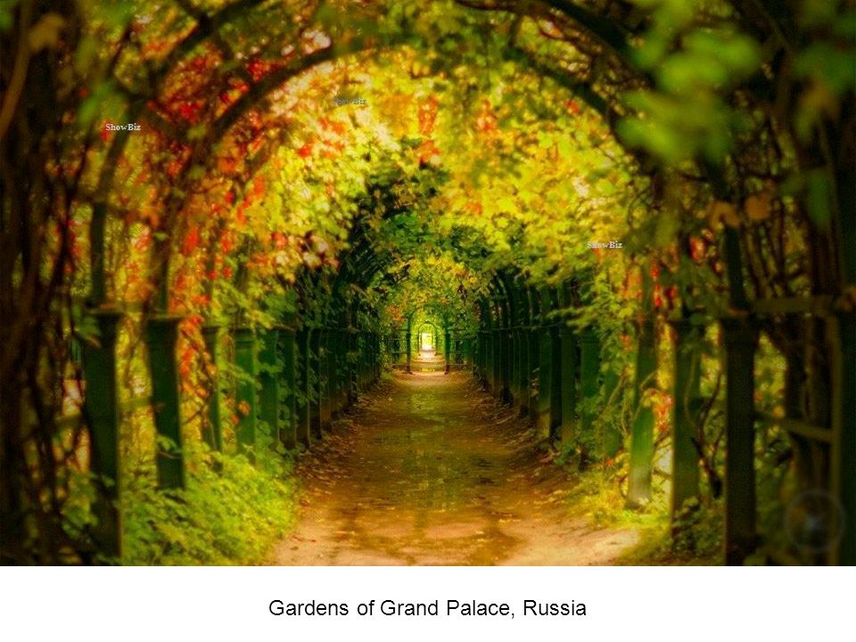 Gardens of Grand Palace, Russia