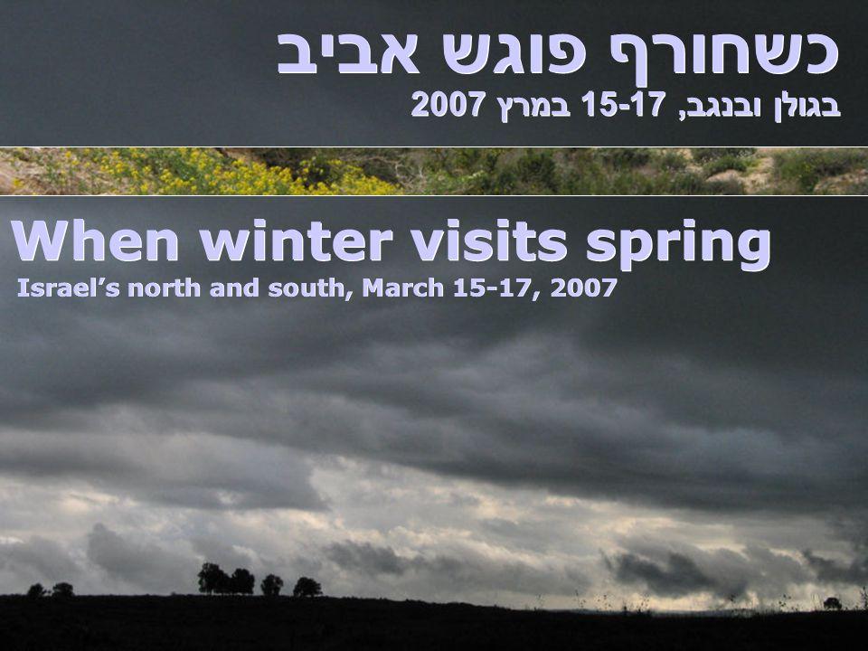 כשחורף פוגש אביב בגולן ובנגב, 15-17 במרץ 2007 When winter visits spring Israel's north and south, March 15-17, 2007