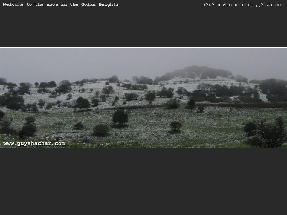 Welcome to the snow in the Golan Heights רמת הגולן, ברוכים הבאים לשלג