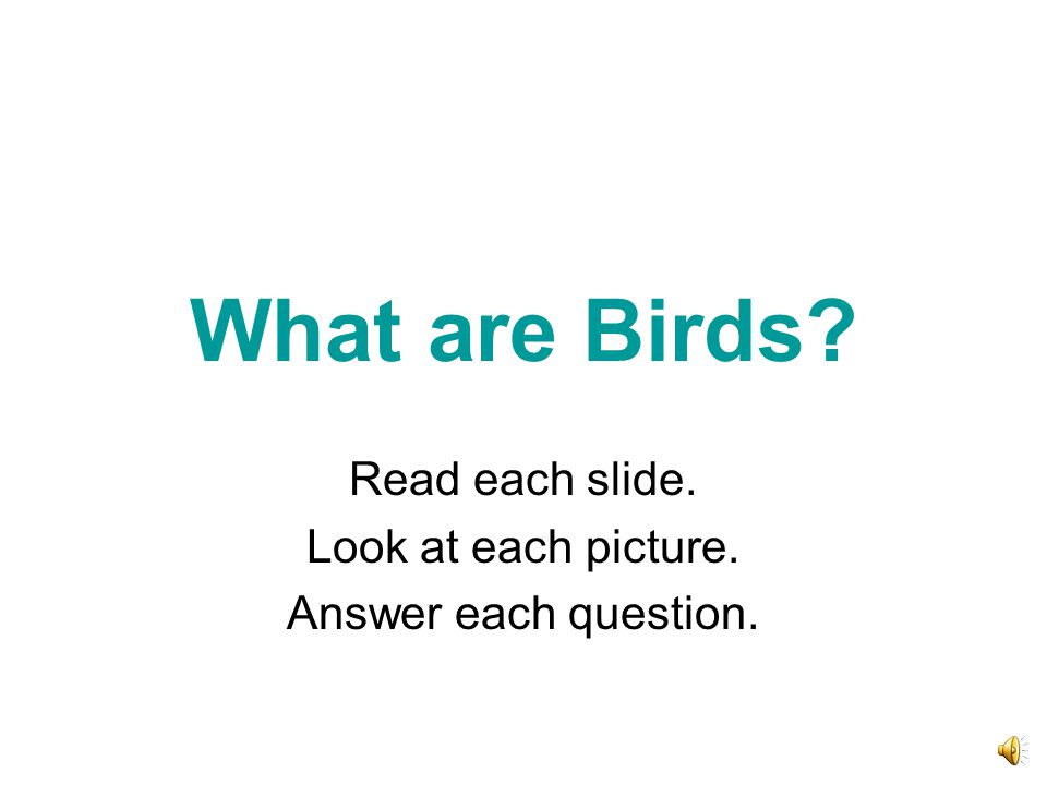 What are Birds? Read each slide. Look at each picture. Answer each question.