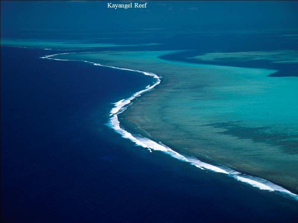 Micronesian Rock Island