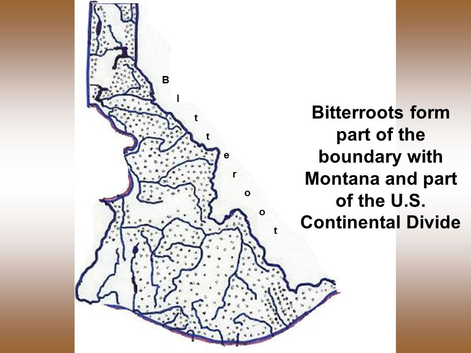 B I t e r o t Bitterroots form part of the boundary with Montana and part of the U.S.