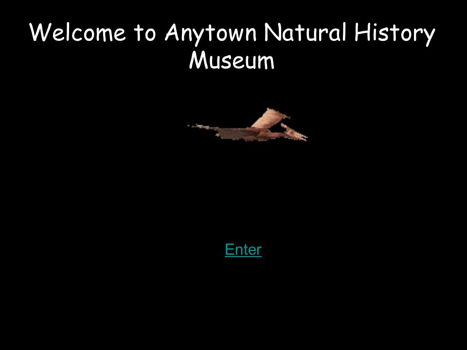 Welcome to Anytown Natural History Museum Enter