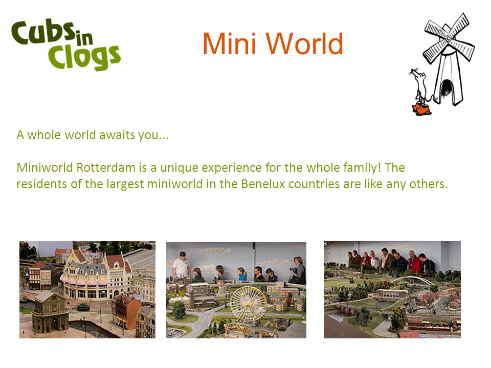 Mini World A whole world awaits you...