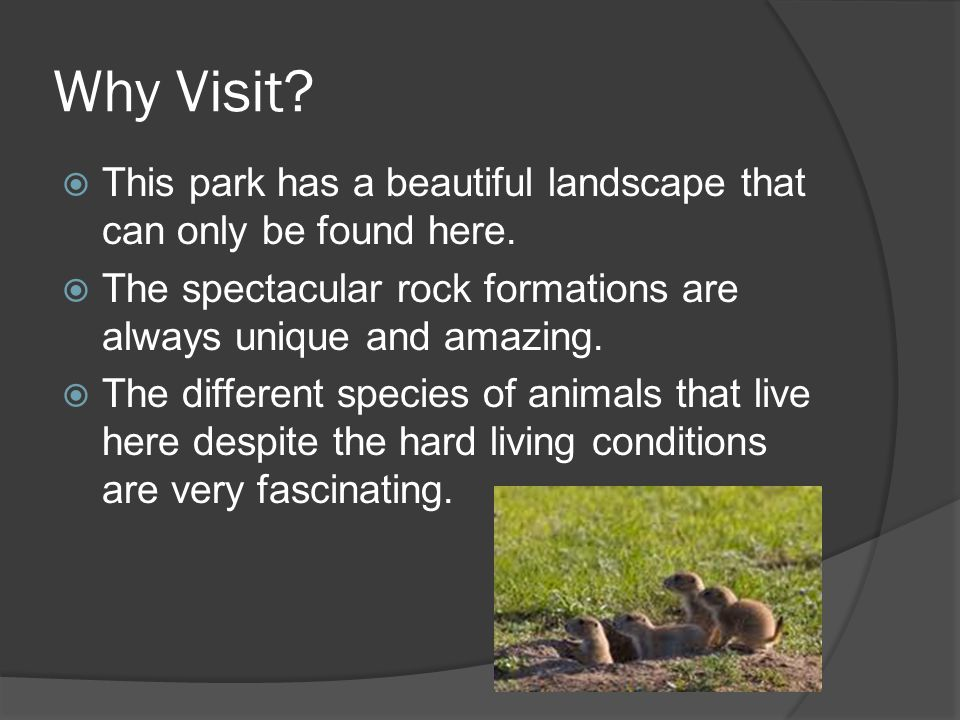 Why Visit. This park has a beautiful landscape that can only be found here.