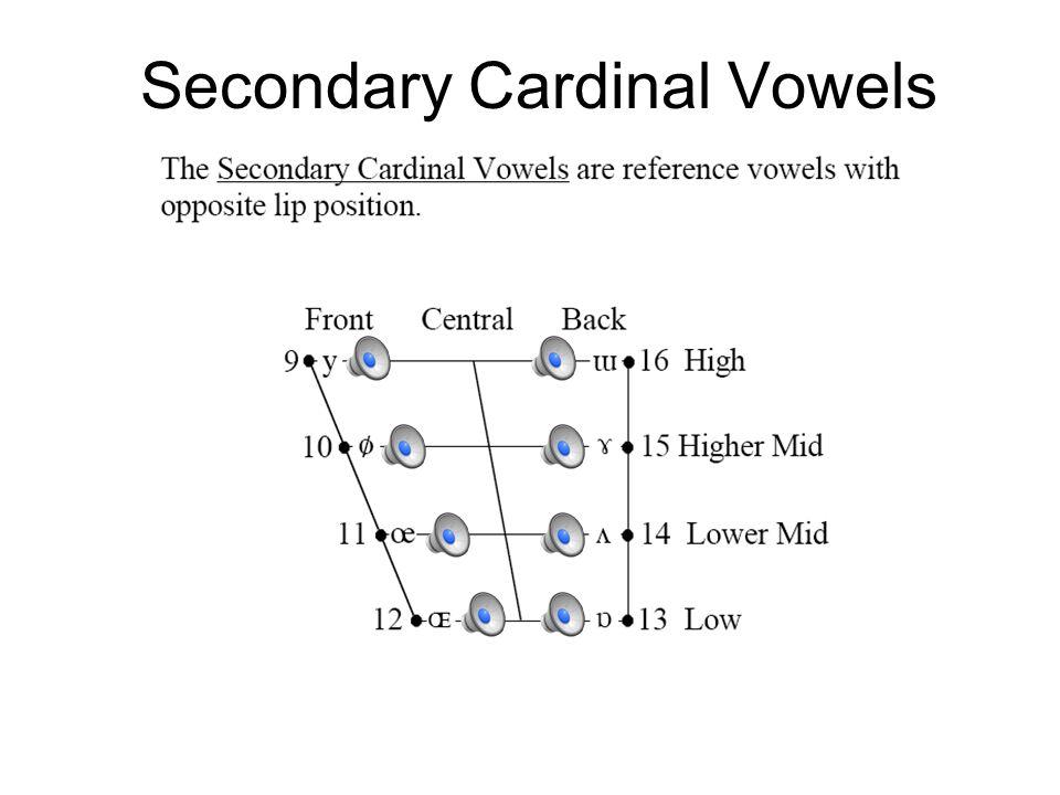 Cardinal Vowel Diagram o