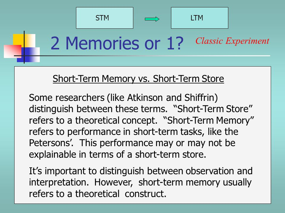 STMLTM Dissociation or Continuity.