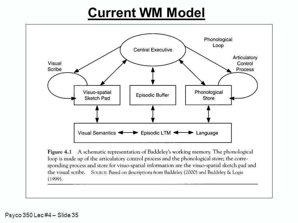 Psyco 350 Lec #4 – Slide 35 Current WM Model
