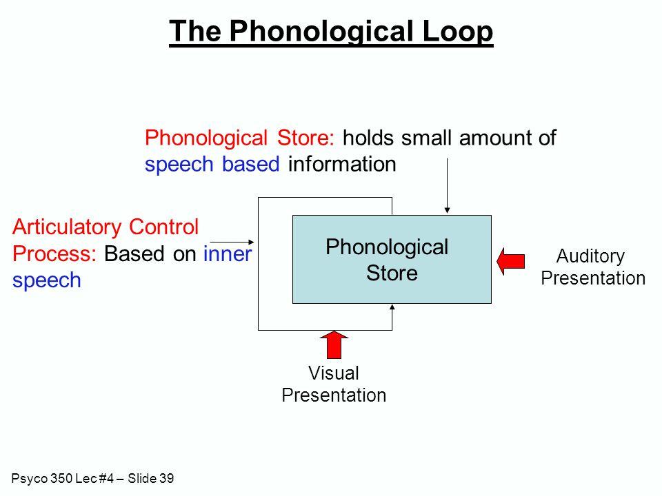 Psyco 350 Lec #4 – Slide 39 The Phonological Loop Phonological Store Phonological Store: holds small amount of speech based information Articulatory C