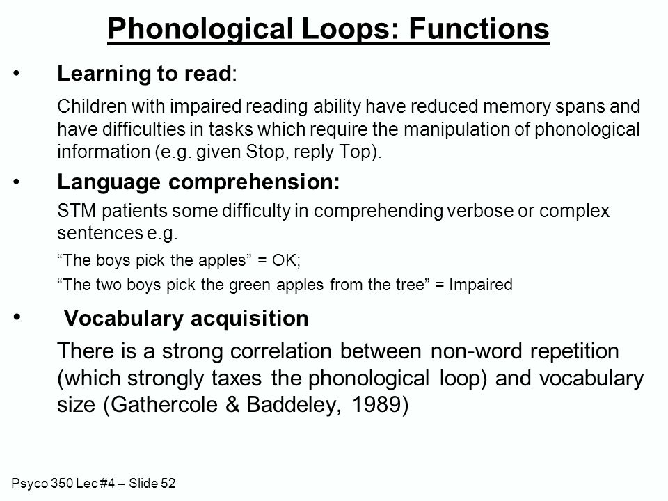 Psyco 350 Lec #4 – Slide 52 Phonological Loops: Functions Learning to read: Children with impaired reading ability have reduced memory spans and have