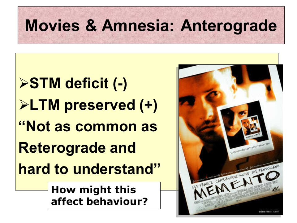 Movies & Amnesia: Anterograde  STM deficit (-)  LTM preserved (+) Not as common as Reterograde and hard to understand How might this affect behaviour?