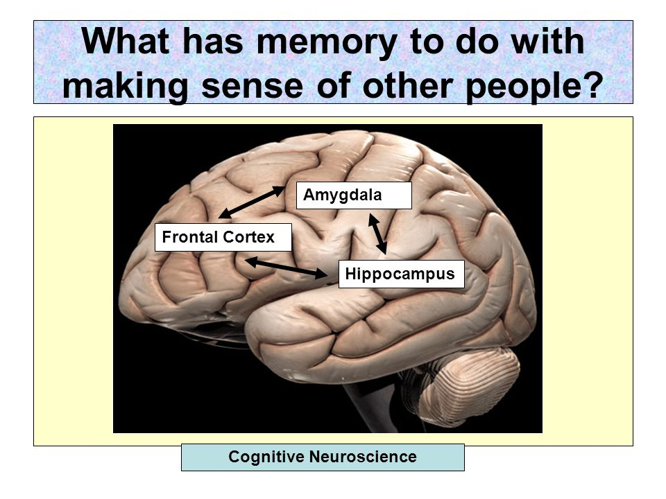 What has memory to do with making sense of other people.