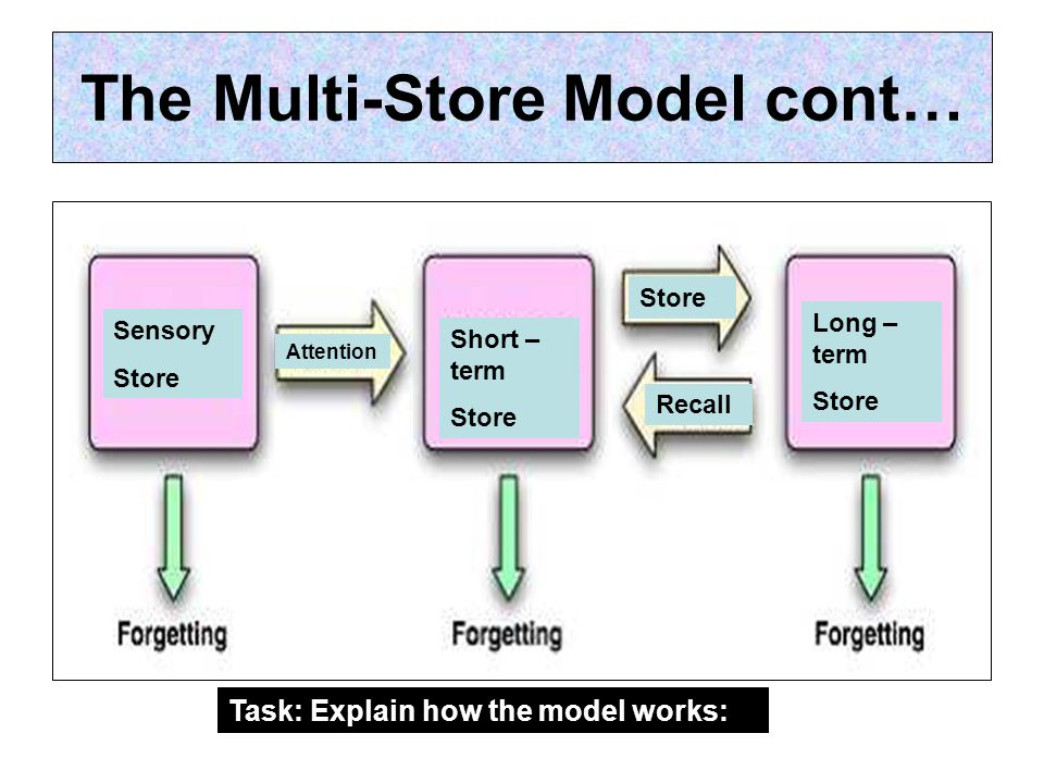 The Multi-Store Model cont… Sensory Store Short – term Store Long – term Store Recall Attention Task: Explain how the model works: