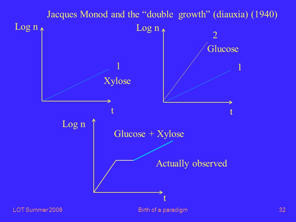 "LOT Summer 2006Birth of a paradigm32 t Log n 1 2 1 Jacques Monod and the ""double growth"" (diauxia) (1940) t t Log n Xylose Glucose Glucose + Xylose Ac"