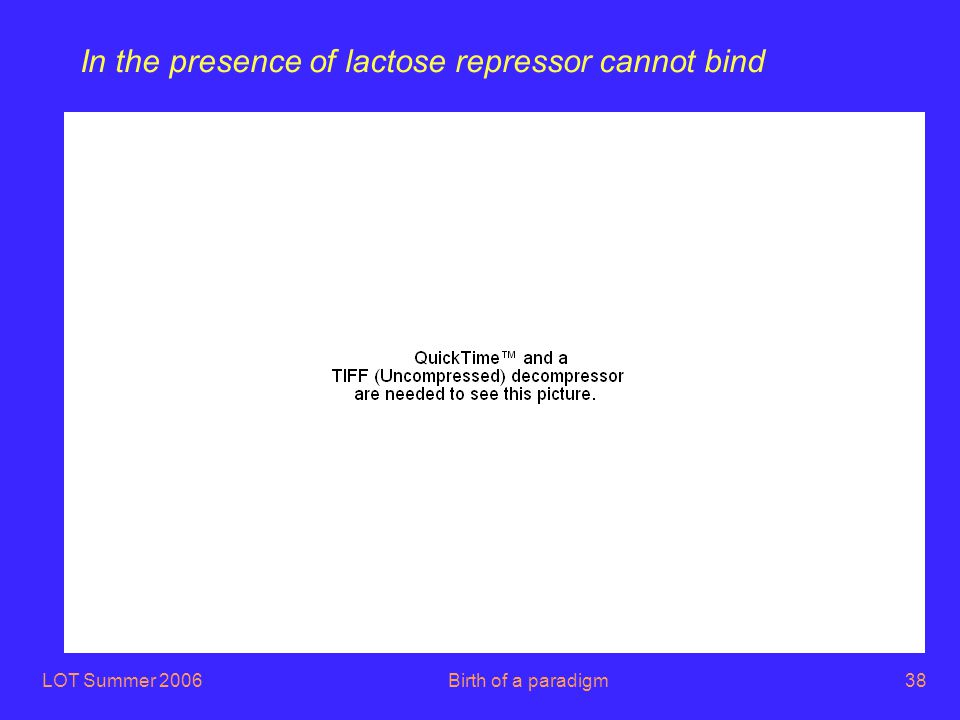 LOT Summer 2006Birth of a paradigm38 In the presence of lactose repressor cannot bind
