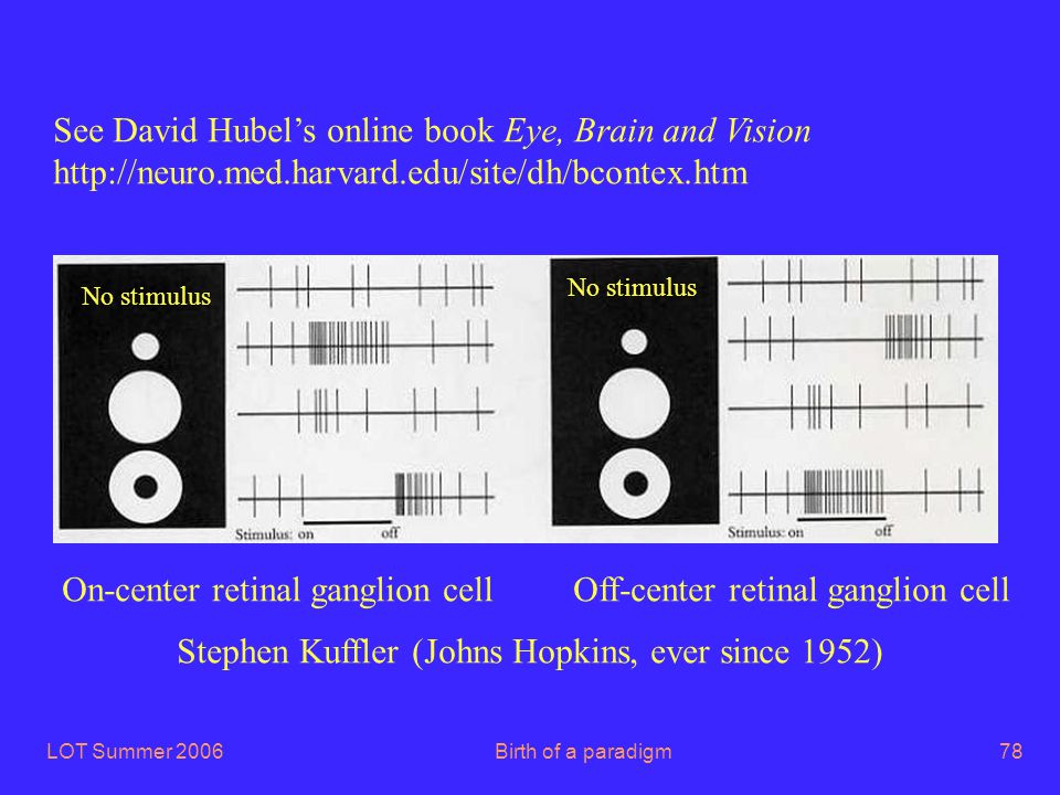 LOT Summer 2006Birth of a paradigm78 On-center retinal ganglion cell Off-center retinal ganglion cell No stimulus Stephen Kuffler (Johns Hopkins, ever