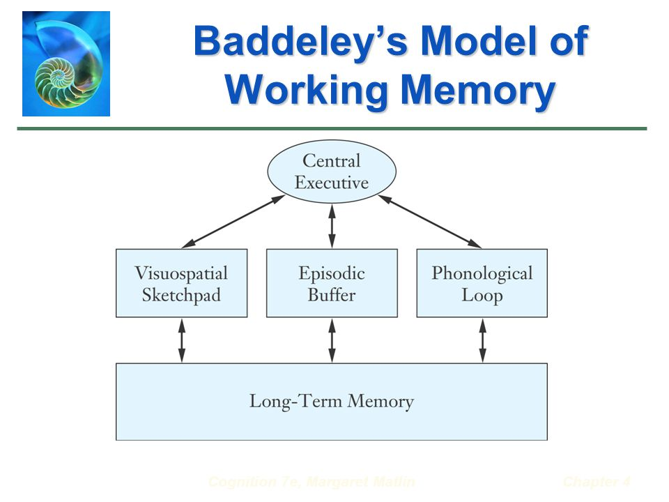 Cognition 7e, Margaret MatlinChapter 4 Baddeley's Model of Working Memory