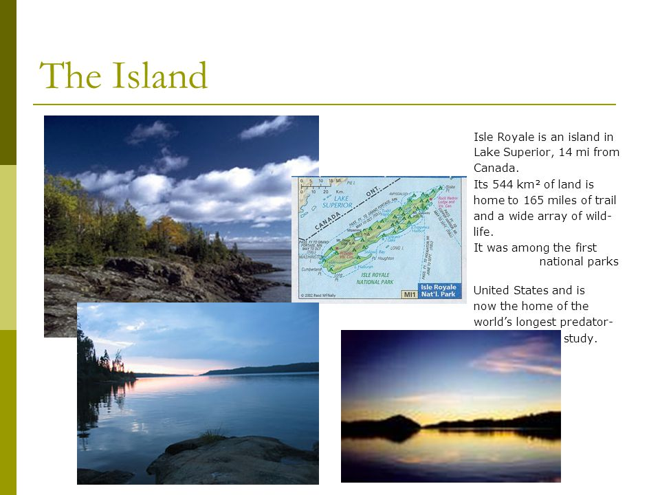 The Island Isle Royale is an island in Lake Superior, 14 mi from Canada. Its 544 km² of land is home to 165 miles of trail and a wide array of wild- l