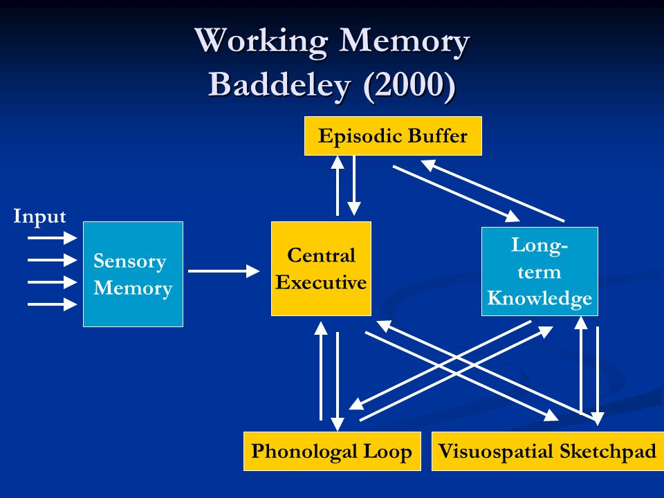 Working Memory Baddeley (2000) Sensory Memory Long- term Knowledge Input Central Executive Phonologal LoopVisuospatial Sketchpad Episodic Buffer