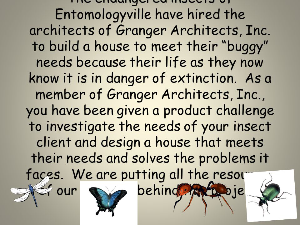 The endangered insects of Entomologyville have hired the architects of Granger Architects, Inc.