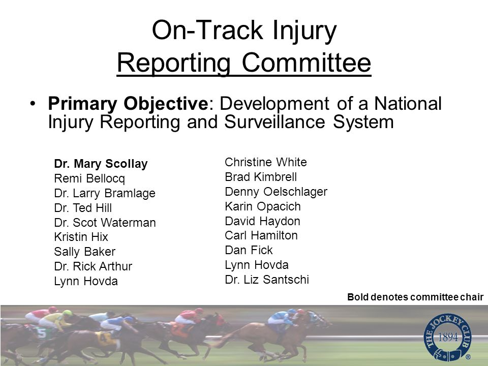 Primary Objective: Development of a National Injury Reporting and Surveillance System Dr.