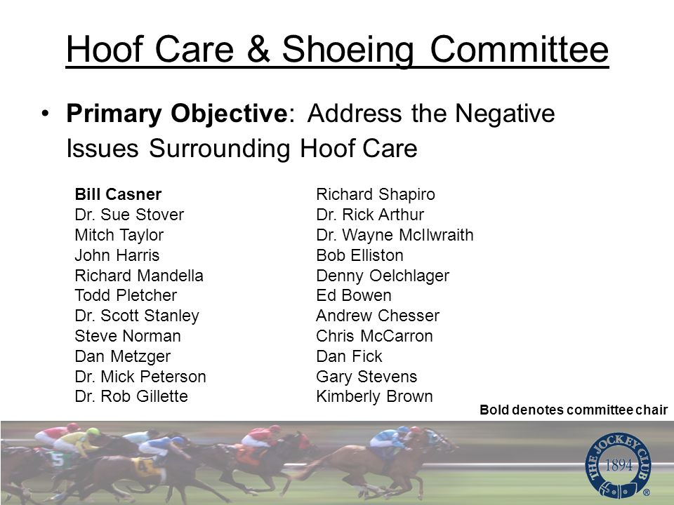 Hoof Care & Shoeing Committee Primary Objective: Address the Negative Issues Surrounding Hoof Care Bill Casner Dr.
