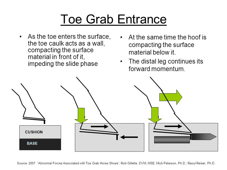 Toe Grab Entrance As the toe enters the surface, the toe caulk acts as a wall, compacting the surface material in front of it, impeding the slide phase At the same time the hoof is compacting the surface material below it.