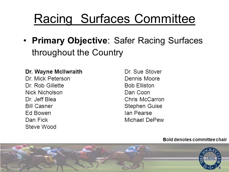 Racing Surfaces Committee Primary Objective: Safer Racing Surfaces throughout the Country Dr.