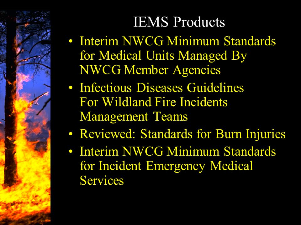 IEMS Products Interim NWCG Minimum Standards for Medical Units Managed By NWCG Member Agencies Infectious Diseases Guidelines For Wildland Fire Incide